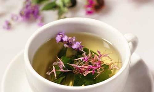 Копорский чай полезен при цистите в любой форме, но напиток можно пить неограниченно и для профилактики заболевания