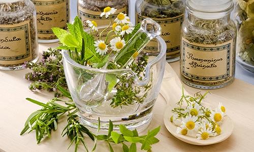 В некоторых случаях терапия может быть дополнена использованием лекарственных трав