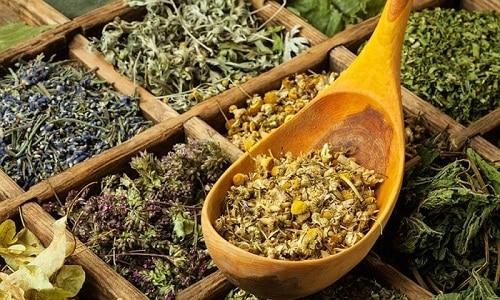 Хороший результат для лечения частого мочеиспускания у детей дает сбор трав из тысячелистника, крапивы, толокнянки, хвоща полевого, зверобоя продырявленного