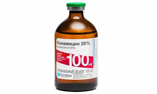 Канамицин - антибиотик группы аминогликозидов