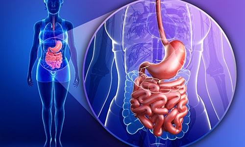 При приеме внутрь активное вещество активно всасывается слизистой оболочкой желудочно-кишечного тракта