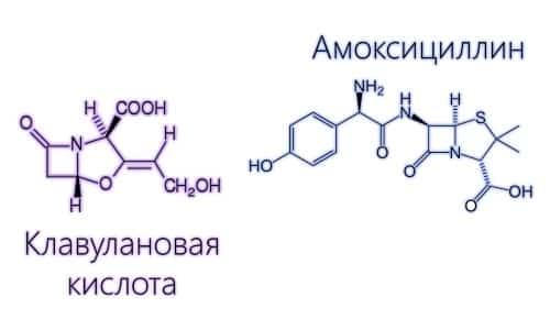 Препарат содержит в себе сразу 2 действующих ингредиента: амоксициллин и клавулановую кислоту