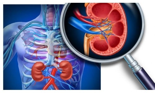 При наличии реноваскулярной гипертензии применение Лизиноприла требует постоянного контроля за показателями артериального давления