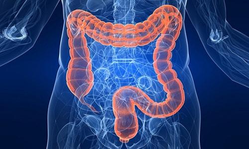 После употребления препарат абсорбируется в кишечном тракте