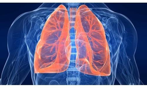 Одновременное применение препаратов назначается врачами для лечения туберкулеза легких