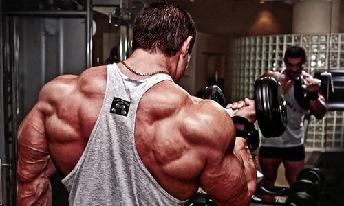 Добавка поддерживает мышцы после усиленных физических нагрузок, уменьшая выраженность катаболических процессов
